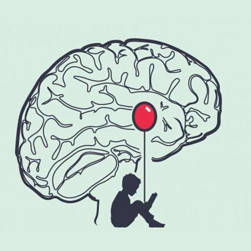 Amigdala: sede delle passioni